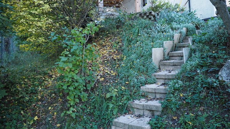 Before-Escallier jardin